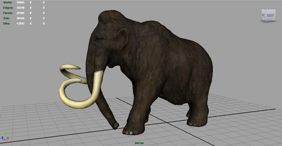 Mammut royalty-free 3d model - Preview no. 5