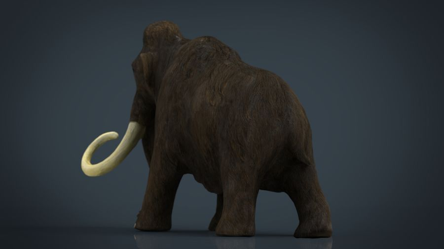 Mammut royalty-free 3d model - Preview no. 3