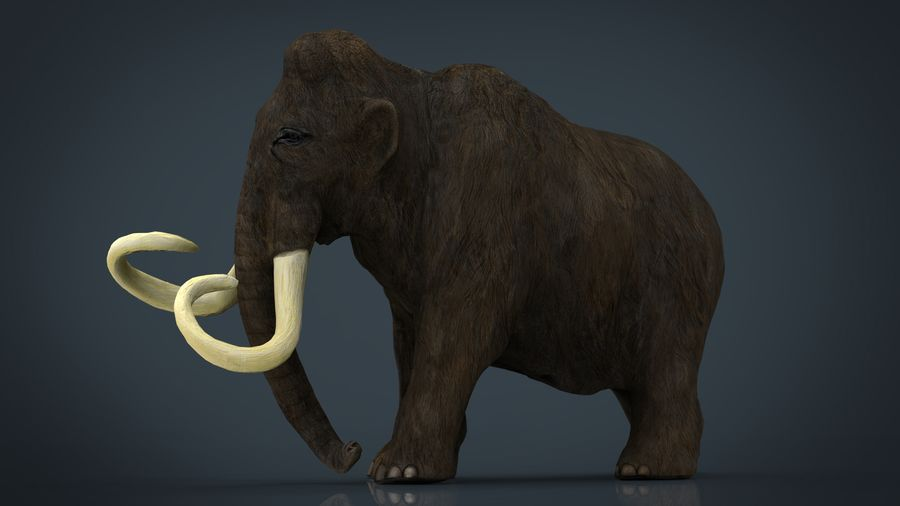 Mammut royalty-free 3d model - Preview no. 1