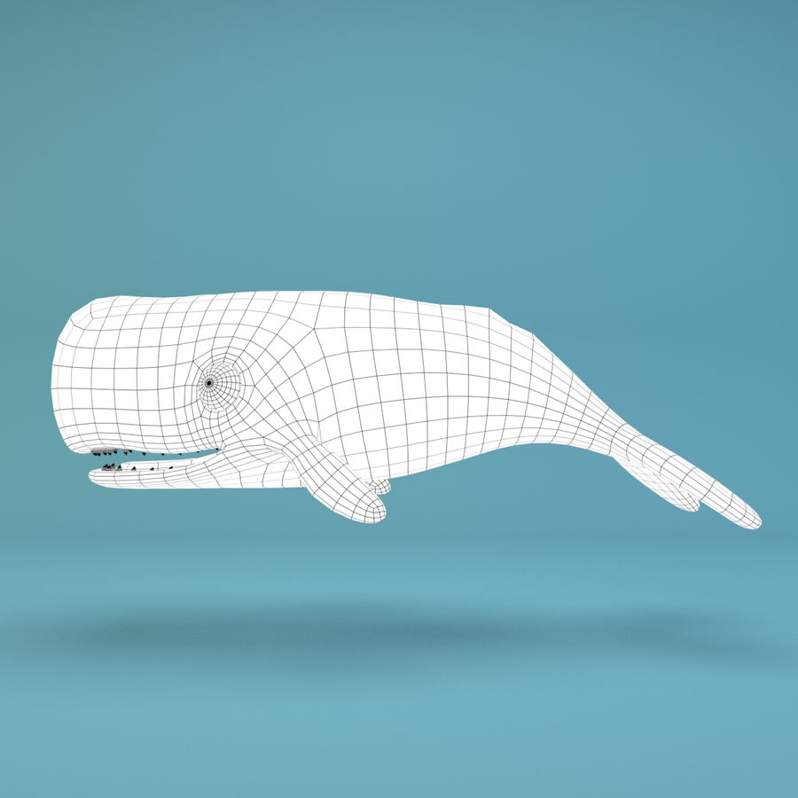 Cartoon Whale royalty-free 3d model - Preview no. 9