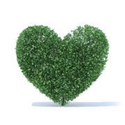 Arbuste en forme de coeur 3d model