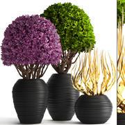 Albero ornamentale 3d model