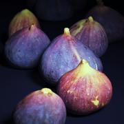 Brown Turkey Figs 3d model