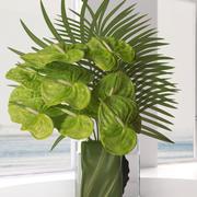 Anthuriums verts et feuilles de palmier 3d model