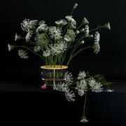 Annes spets i Ikebana vas 3d model