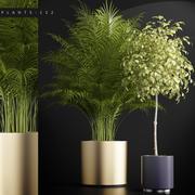 Pflanzen gesetzt 152 3d model