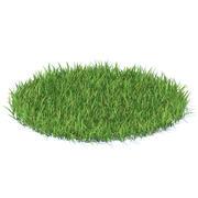 Grass modèle 3D 3d model