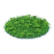 3D модель Трава с растениями 3d model