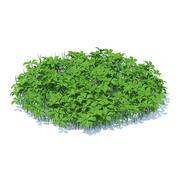 Modelo 3D de grama com plantas 3d model