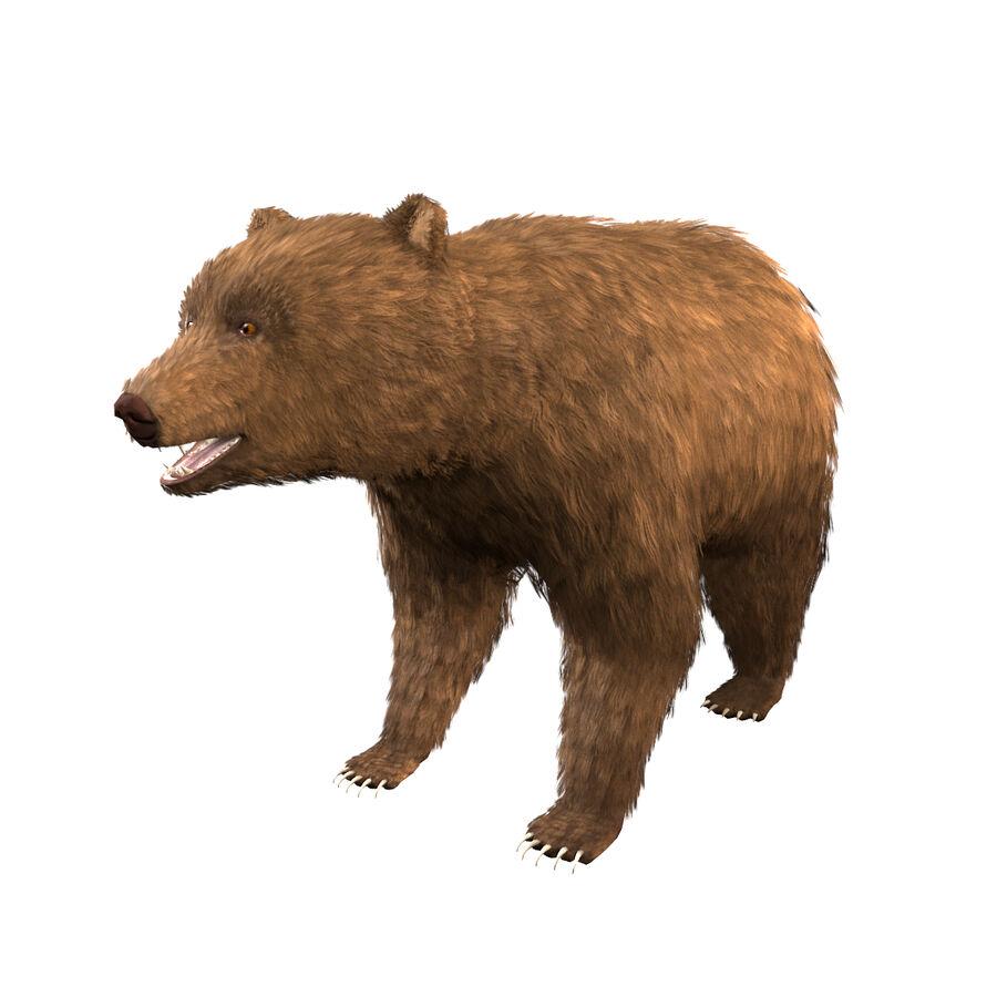 게임 준비가 된 곰 royalty-free 3d model - Preview no. 1