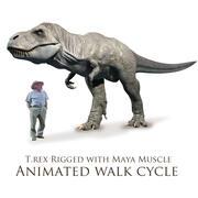 T.rex stationaire loopcyclus 3d model