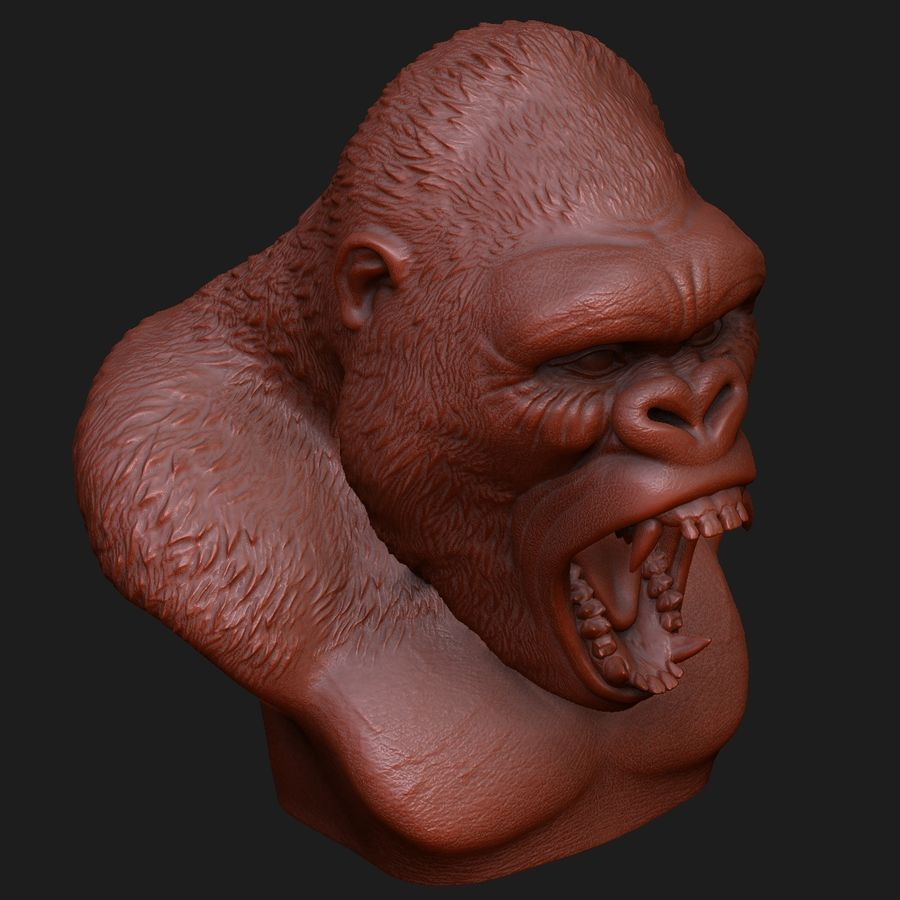 testa di gorilla arrabbiata royalty-free 3d model - Preview no. 8
