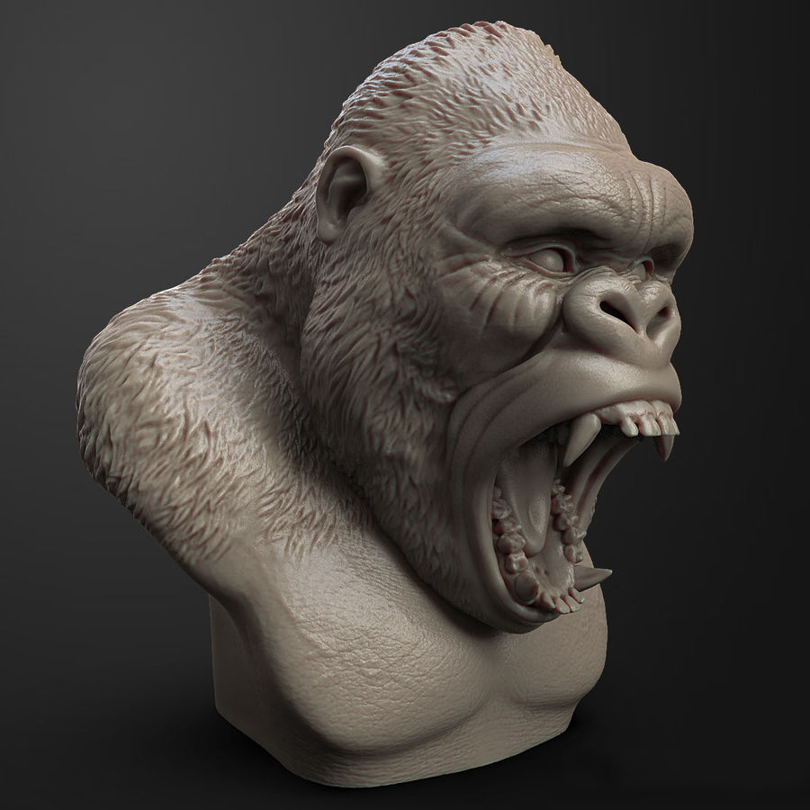 testa di gorilla arrabbiata royalty-free 3d model - Preview no. 3