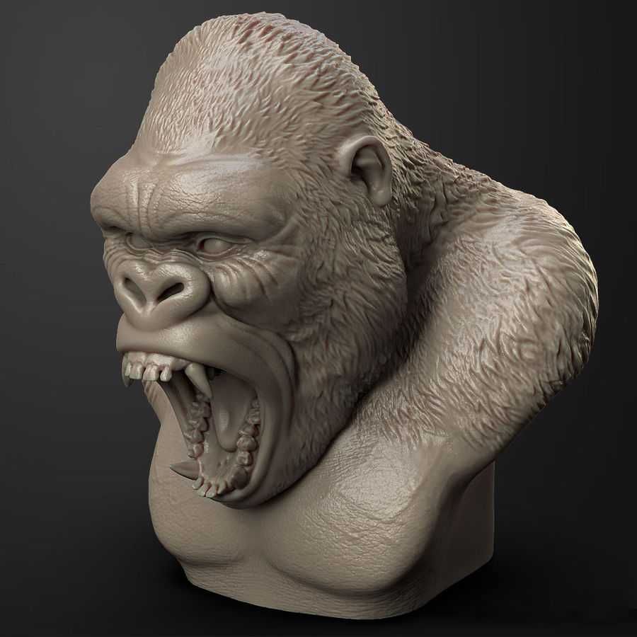 testa di gorilla arrabbiata royalty-free 3d model - Preview no. 4