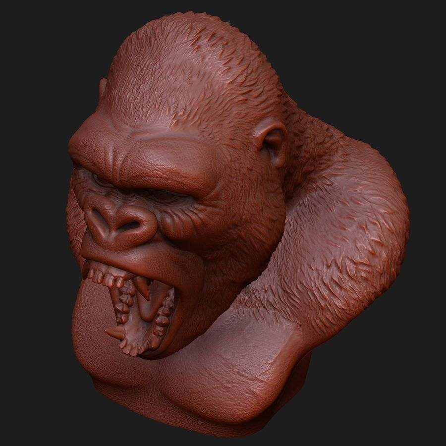 testa di gorilla arrabbiata royalty-free 3d model - Preview no. 10