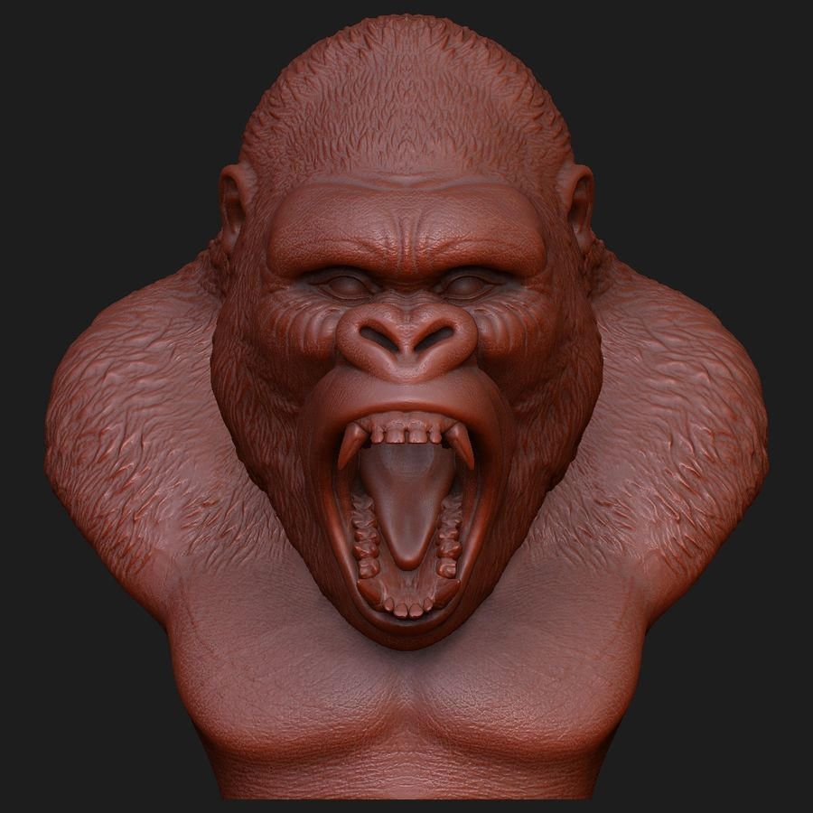 testa di gorilla arrabbiata royalty-free 3d model - Preview no. 6