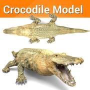 crocodile low poly 3d model