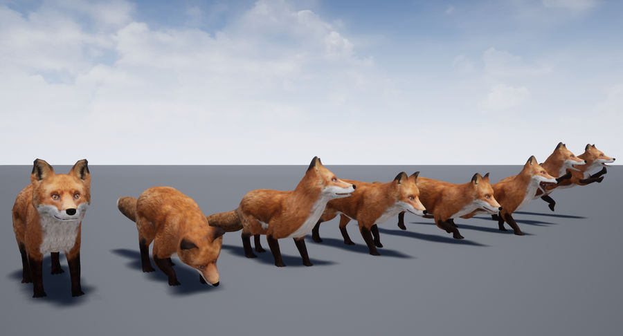 Fox Animated royalty-free 3d model - Preview no. 19