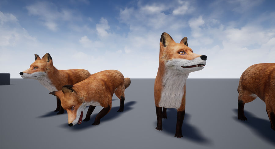 Fox Animated royalty-free 3d model - Preview no. 20