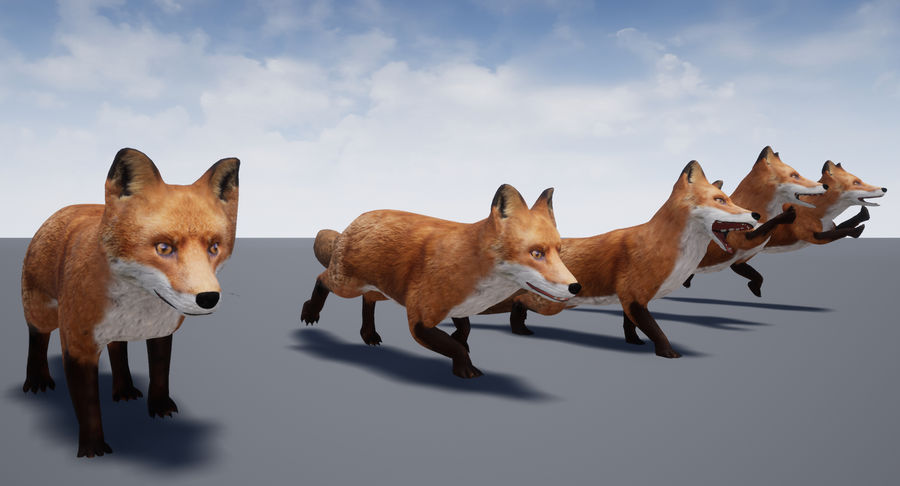 Fox Animated royalty-free 3d model - Preview no. 21