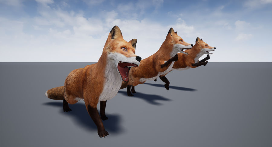 Fox Animated royalty-free 3d model - Preview no. 22