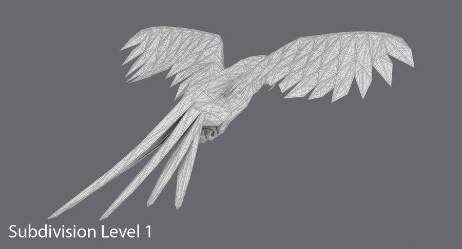 鹦鹉蓝飞 royalty-free 3d model - Preview no. 17