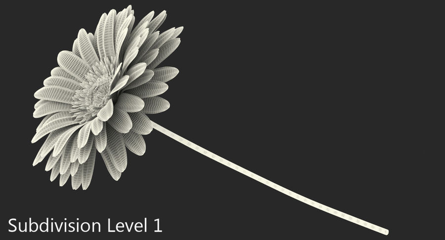 Flor de gerbera amarilla royalty-free modelo 3d - Preview no. 8