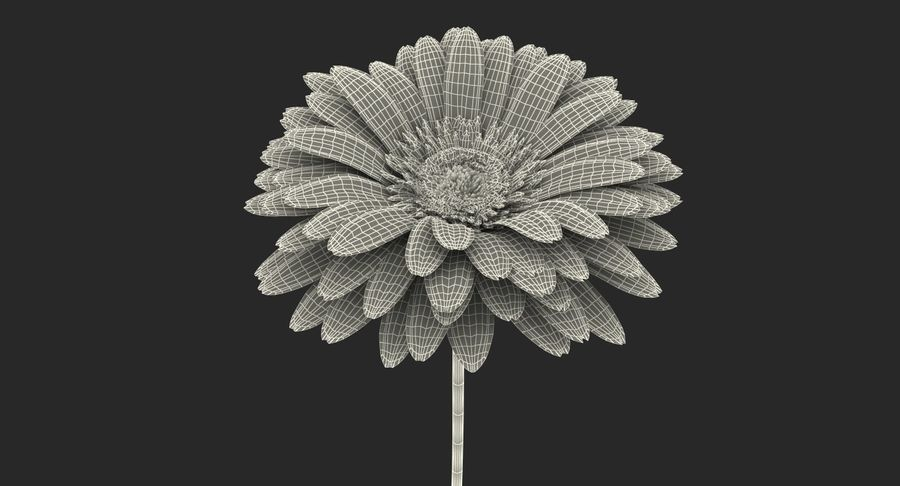 Flor de gerbera amarilla royalty-free modelo 3d - Preview no. 15