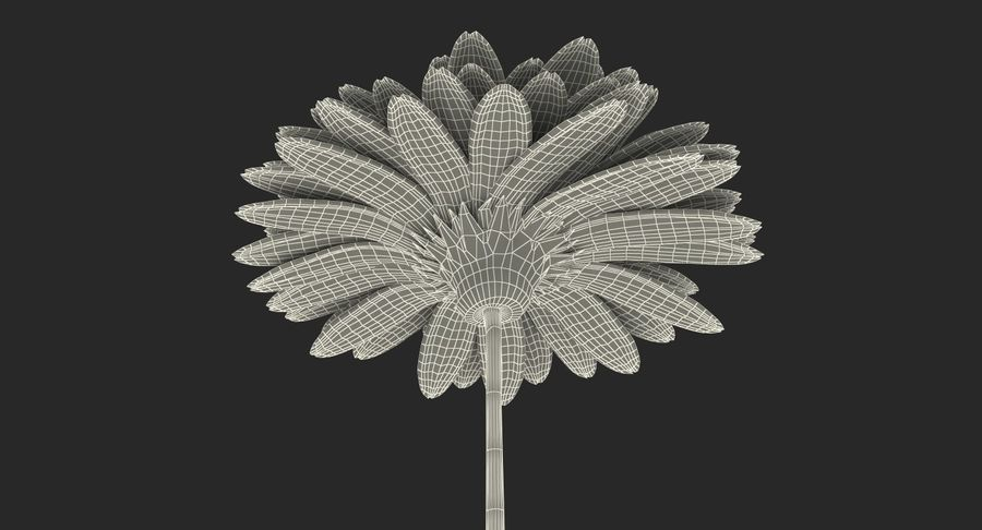 Flor de gerbera amarilla royalty-free modelo 3d - Preview no. 16