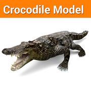 Gotowy model gry Crocodile Low poly 3d model