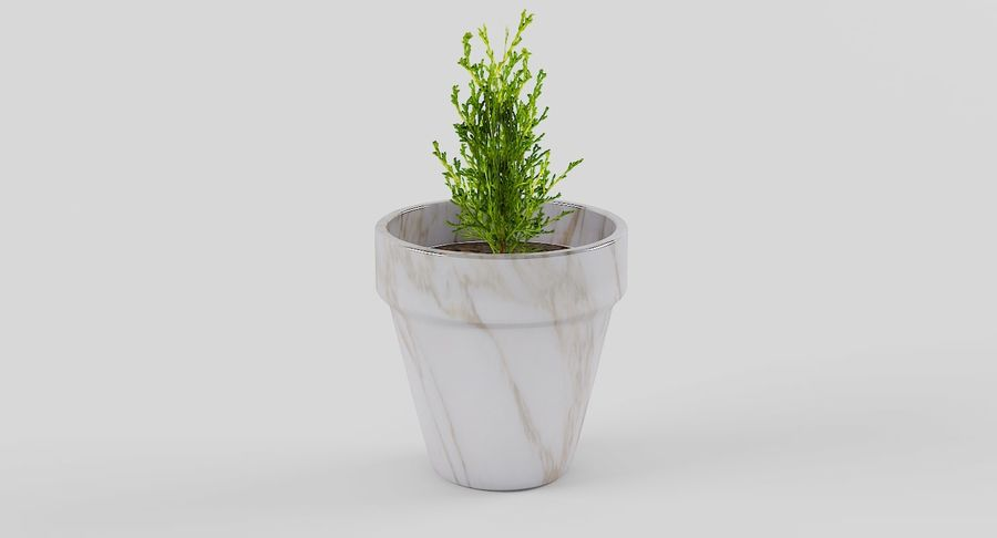 Pot de fleurs avec plante royalty-free 3d model - Preview no. 2