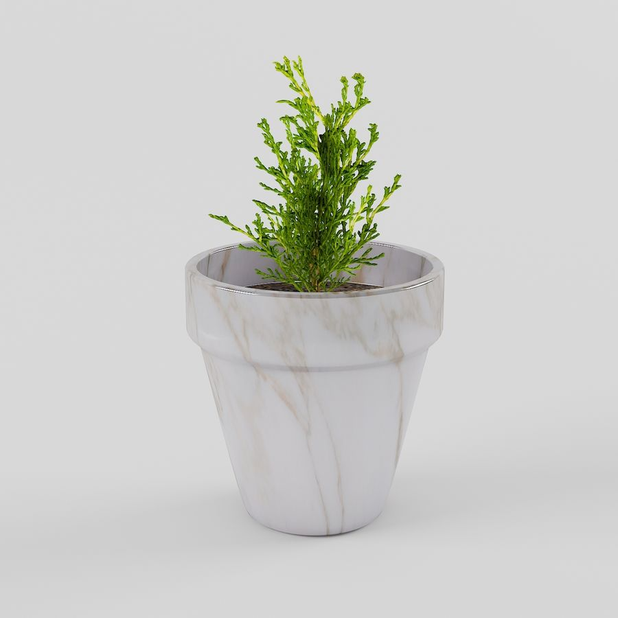 Pot de fleurs avec plante royalty-free 3d model - Preview no. 1