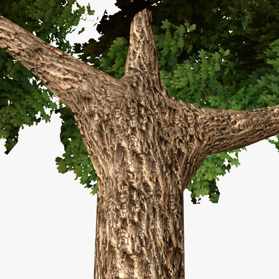 Låg poly träd royalty-free 3d model - Preview no. 7