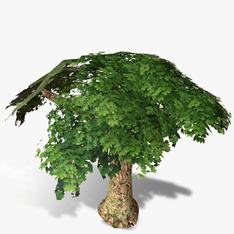 Låg poly träd royalty-free 3d model - Preview no. 8