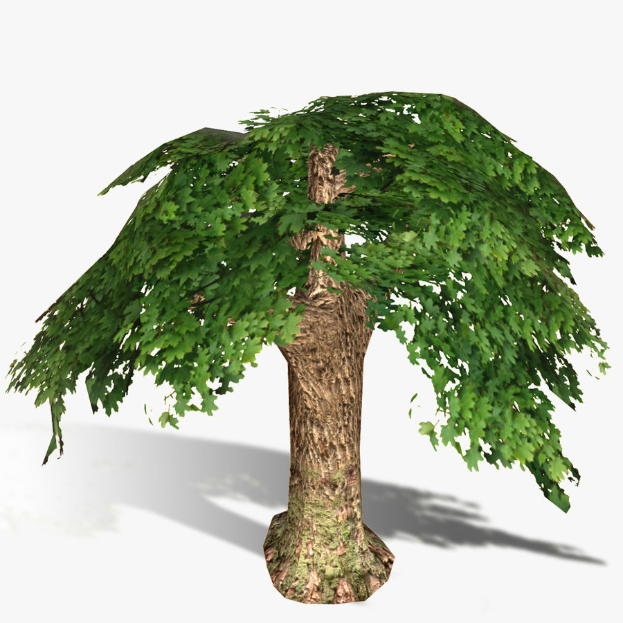 Låg poly träd royalty-free 3d model - Preview no. 5