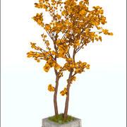 Árbol de otoño modelo 3d