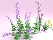 Kwiaty - Liliowiec Campanula Butomus 3d model