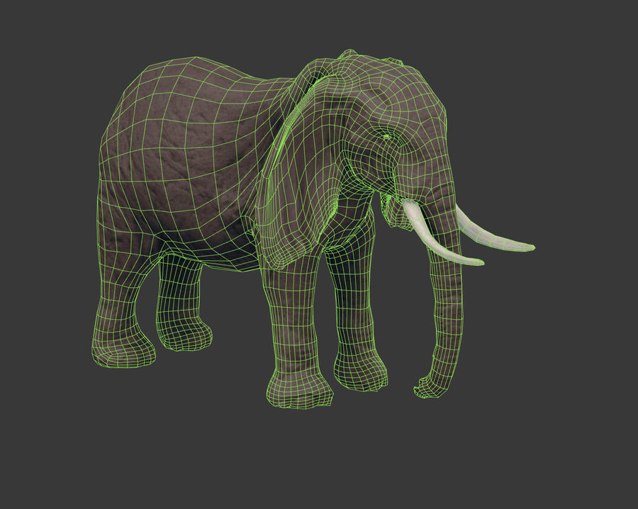 africa animals royalty-free 3d model - Preview no. 22