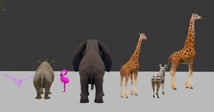 africa animals royalty-free 3d model - Preview no. 4