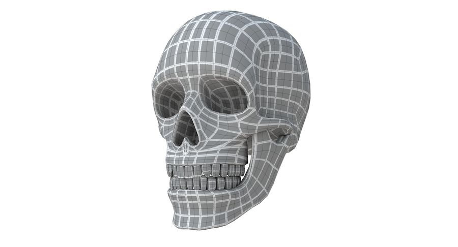 Skull without texture royalty-free 3d model - Preview no. 18