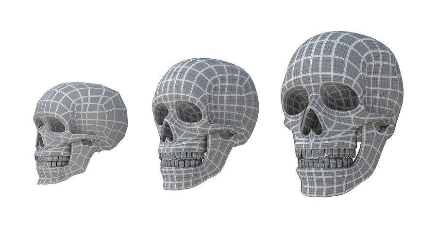 Skull without texture royalty-free 3d model - Preview no. 20