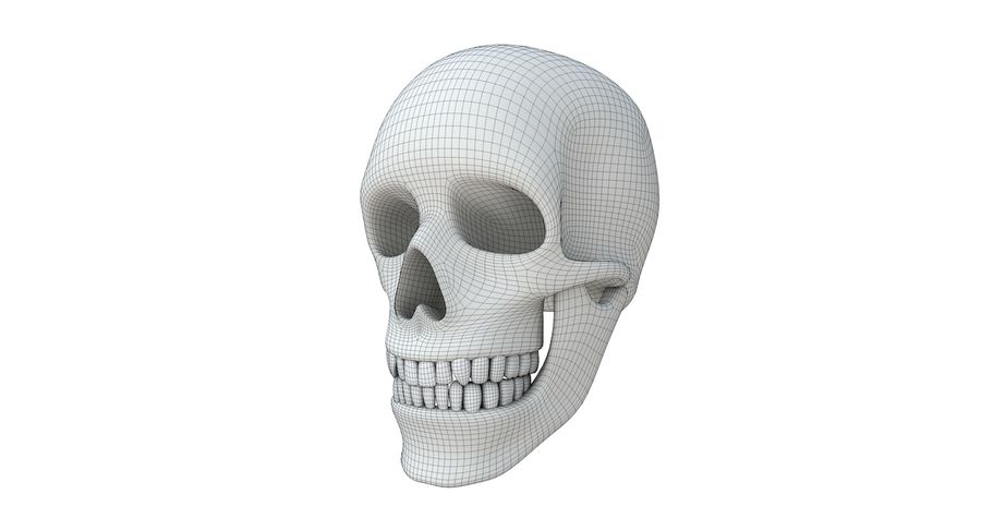 Skull without texture royalty-free 3d model - Preview no. 16