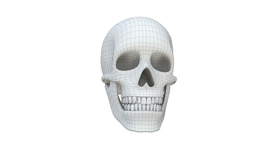 Skull without texture royalty-free 3d model - Preview no. 14