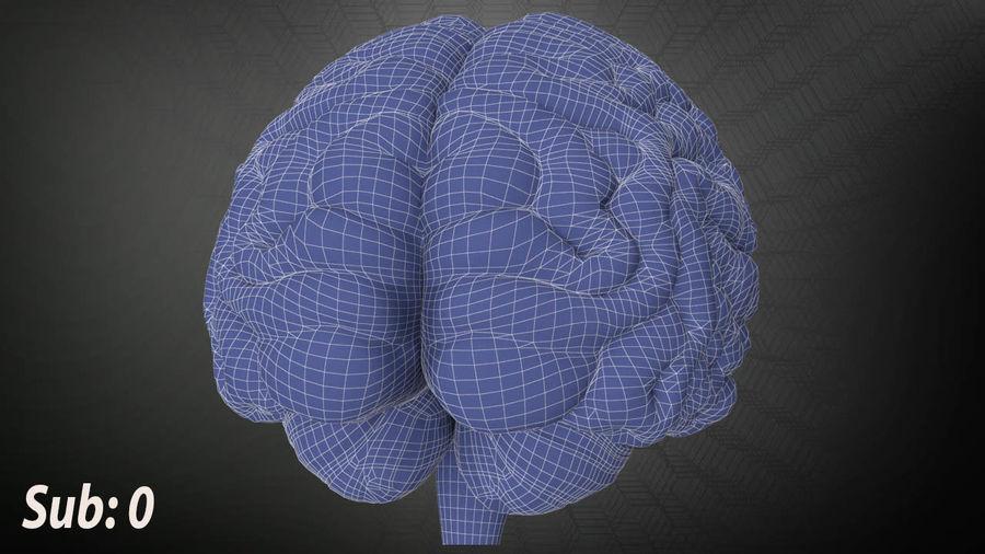Mänsklig hjärna royalty-free 3d model - Preview no. 9