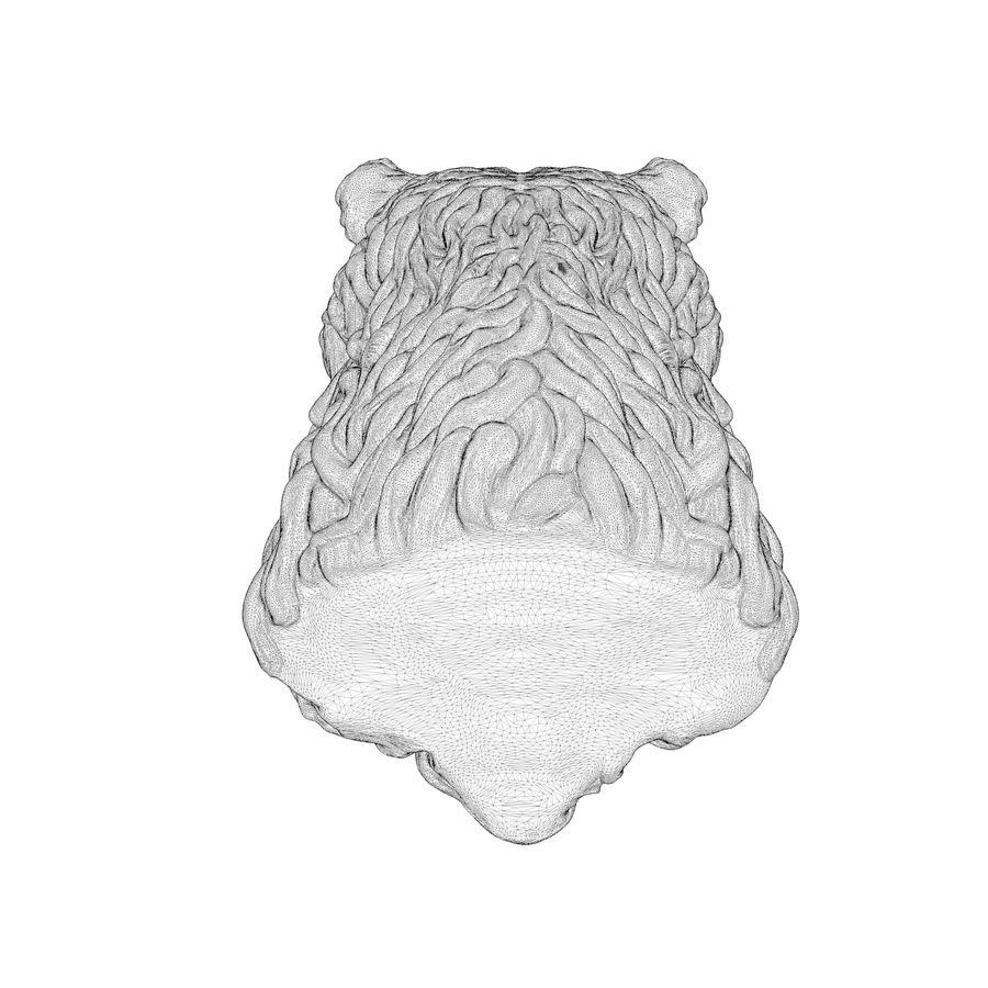 Cabeça de urso encaracolada royalty-free 3d model - Preview no. 10