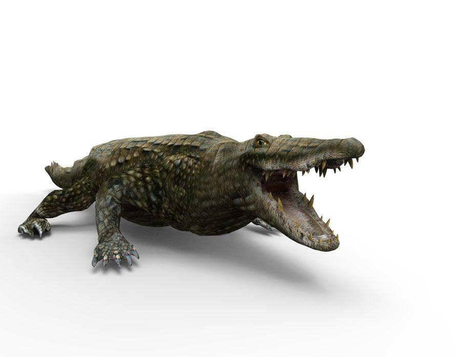 krokodil låg poly spel redo royalty-free 3d model - Preview no. 13