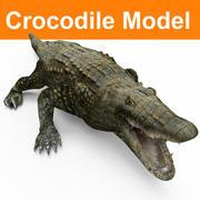 krokodil låg poly spel redo 3d model