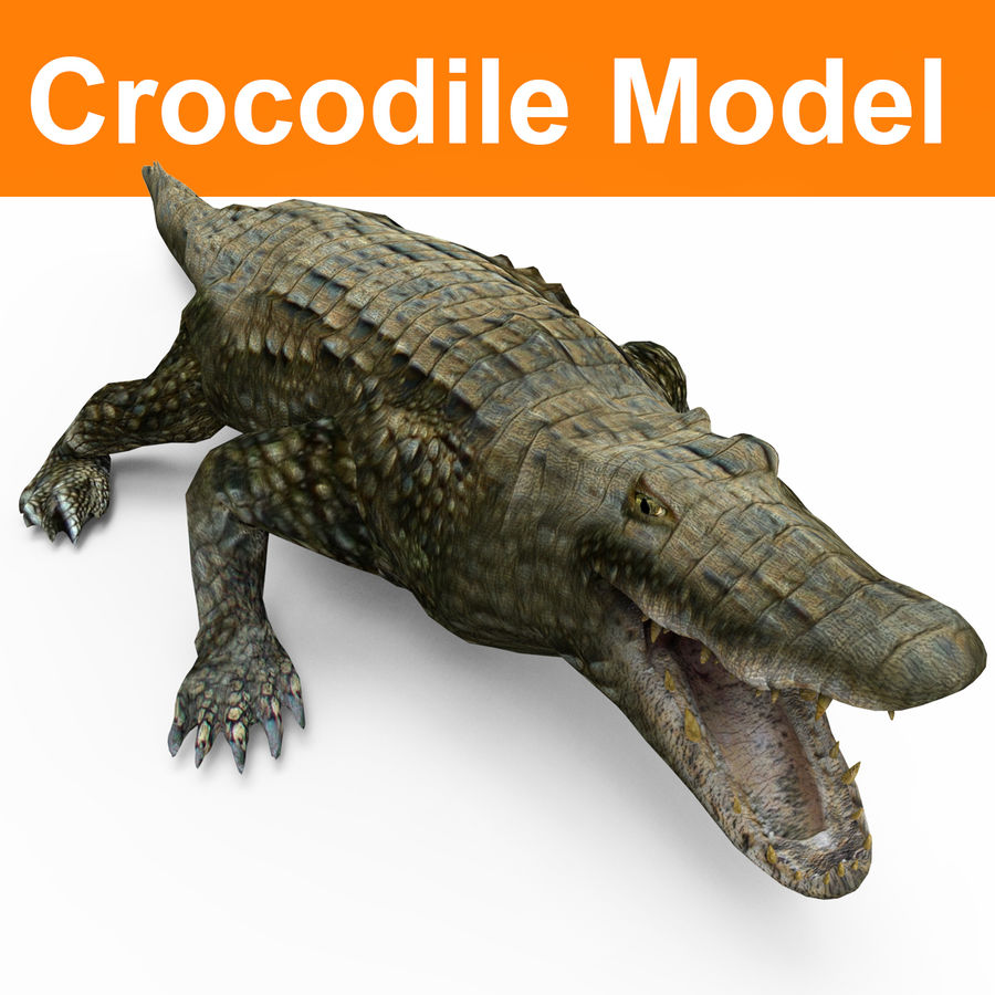 krokodil låg poly spel redo royalty-free 3d model - Preview no. 1