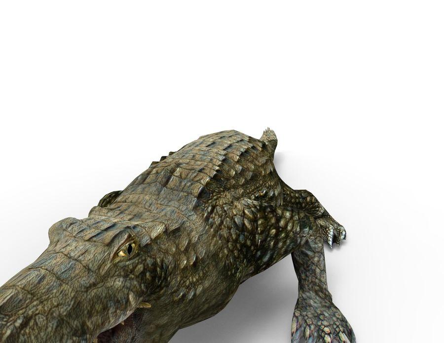 krokodil låg poly spel redo royalty-free 3d model - Preview no. 15