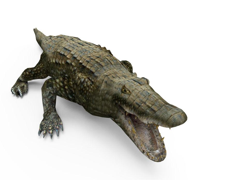 krokodil låg poly spel redo royalty-free 3d model - Preview no. 3